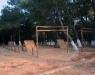 Antalya Gençlik Spor İl Müdürlüğü Duacı Gençlik Kampı Survivor Parkuru ve Paintball Saha Kurulumu